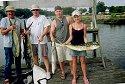Myrtle beach fishing charters fish hook charters for Myrtle beach fishing charters prices